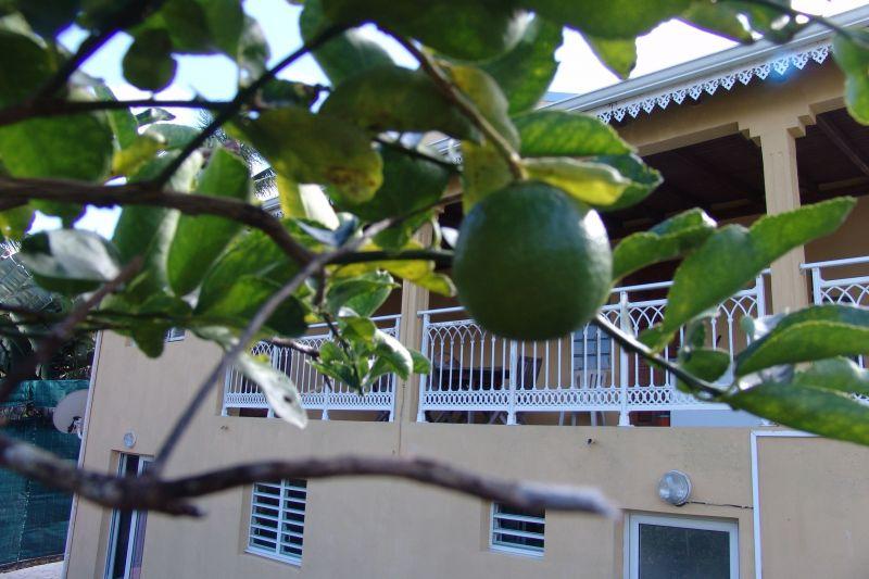 Vista esterna della casa vacanze Affitto Appartamento 117365 Goyave