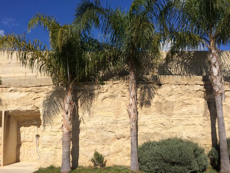 Giardino Affitto Villa  81007 Marina di Ragusa