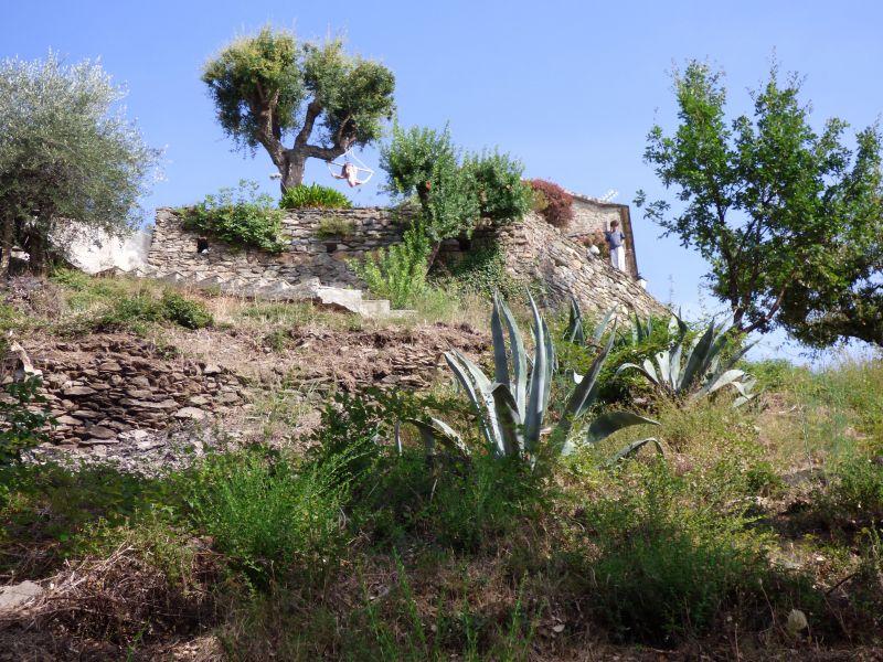 Giardino Affitto Casa 90781 Santa-Lucia-di-Moriani