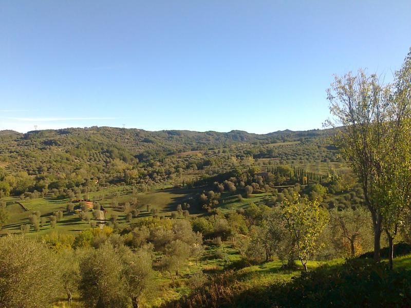 Vista dalla casa vacanze Affitto Casa 14841 Montalcino