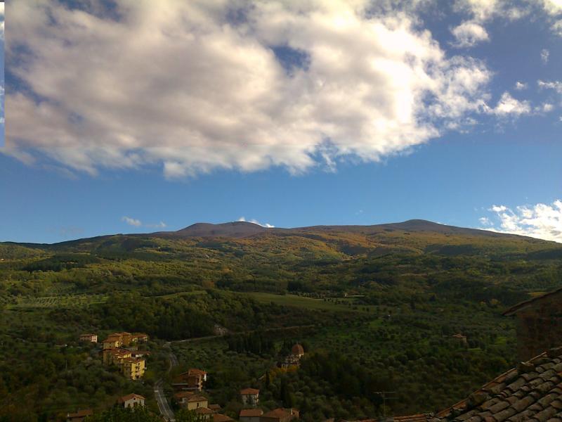 Vista dal terrazzo Affitto Casa 14841 Montalcino