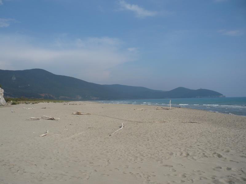 Spiaggia Affitto Casa 14841 Montalcino
