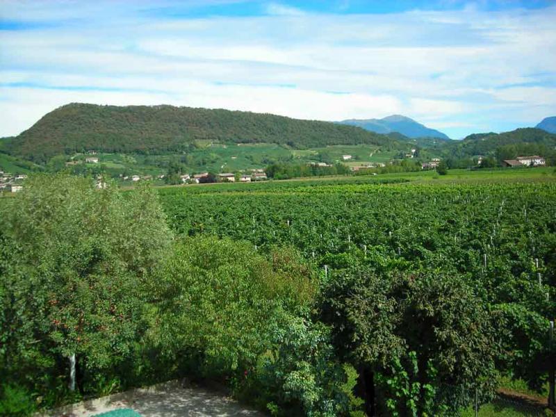 Vista dal balcone Affitto Appartamento 21158 Treviso