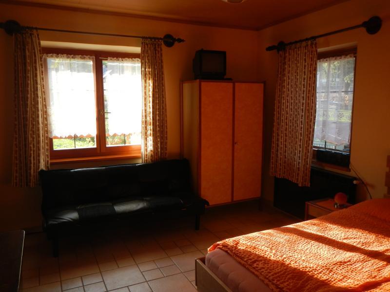 Camera Affitto Monolocale 23090 Tarvisio
