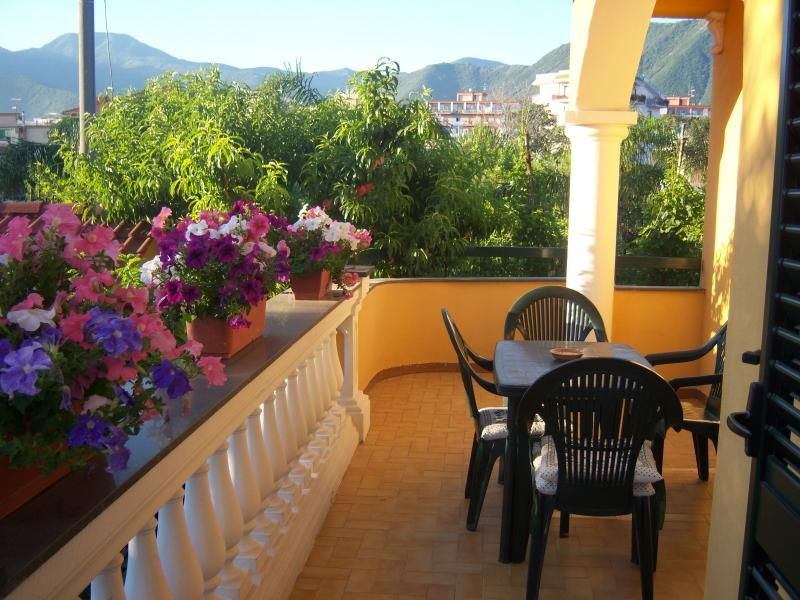 Terrazzo Affitto Appartamento 23651 Pompei