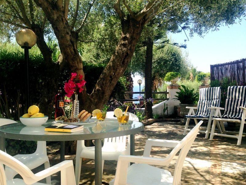 Giardino Affitto Appartamento 24768 Capo Vaticano