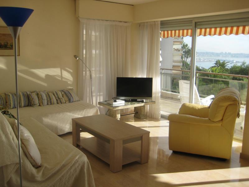Soggiorno Affitto Appartamento 24962 Cannes