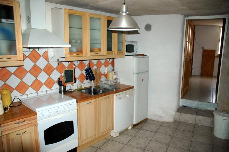Cucina all'americana Affitto Appartamento 2888 Serre Chevalier