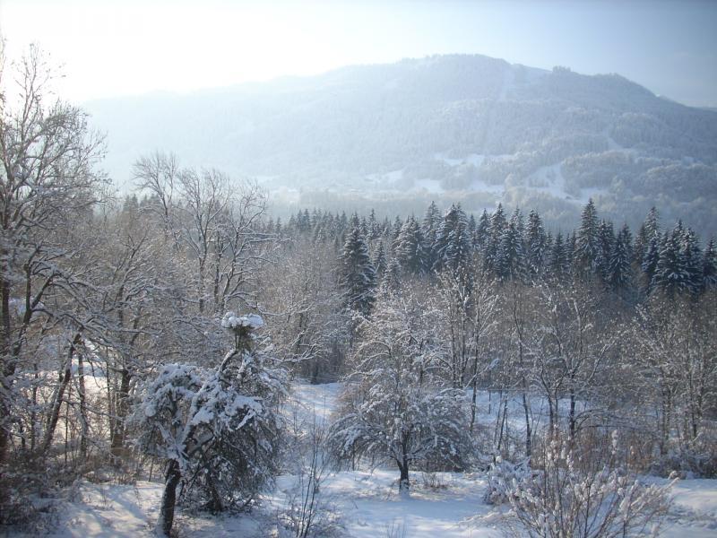 Vista dalla casa vacanze Affitto Appartamento 28936 Samoëns