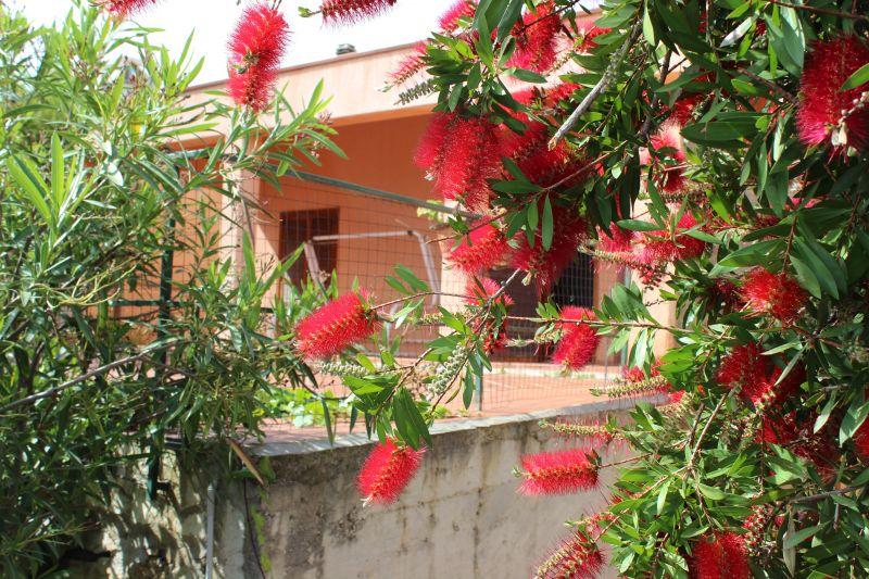 Altra vista Affitto Villa  31625 Scopello