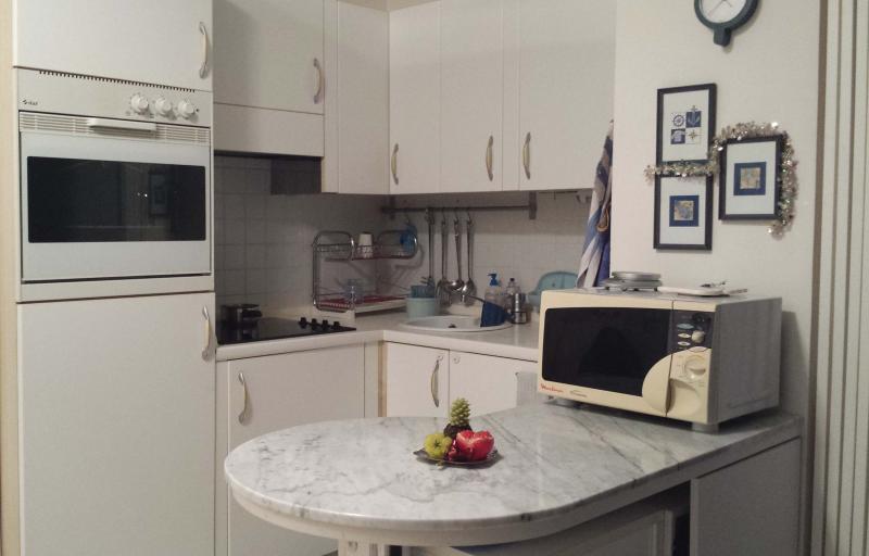 Angolo cottura Affitto Appartamento 35730 Menton (Mentone)
