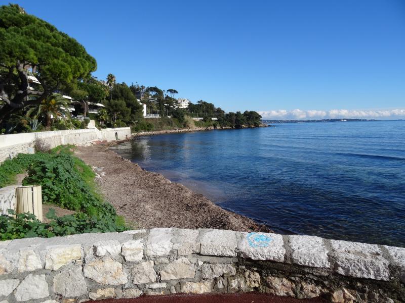 Vista nelle vicinanze Affitto Appartamento 39310 Cannes