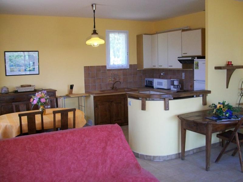 Cucina all'americana Affitto Appartamento 40549 Olmeto