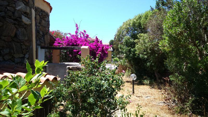 Giardino Affitto Villa  45862 Golfo Aranci