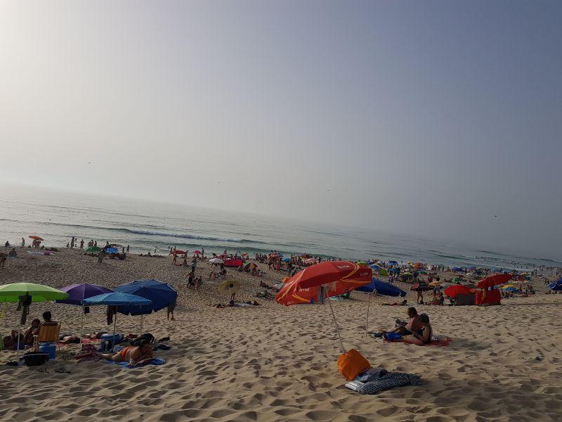 Spiaggia Affitto B&B 46546 Praia do Pedrogão