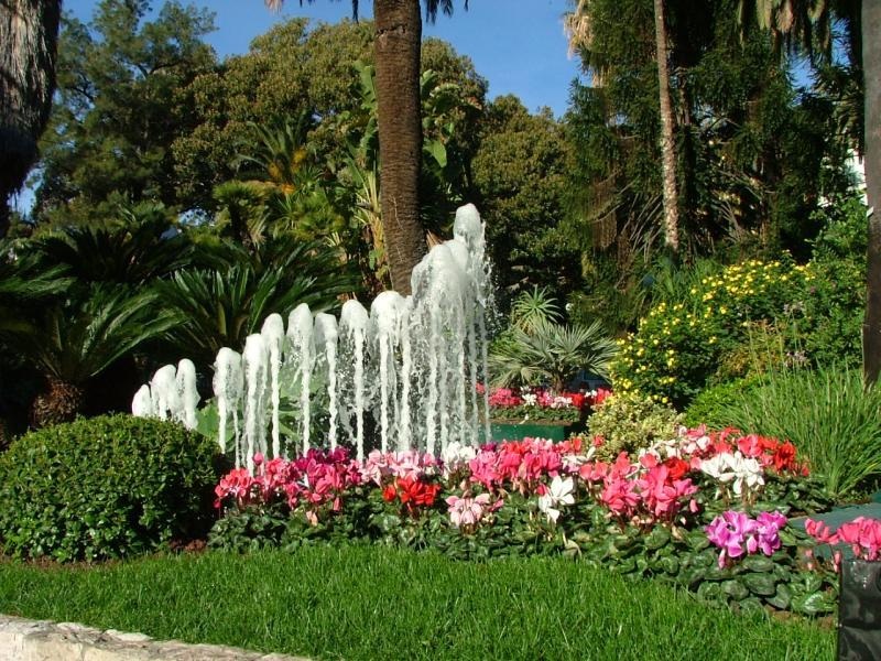 Vista nelle vicinanze Affitto Bungalow 48673 Sanremo