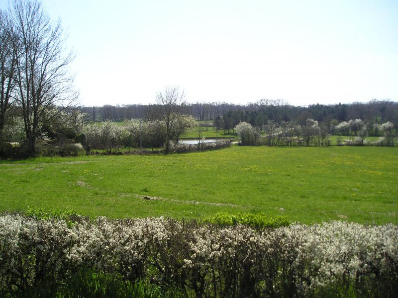 Vista dalla casa vacanze Affitto Agriturismo 51135 Saint-Cirq-Lapopie