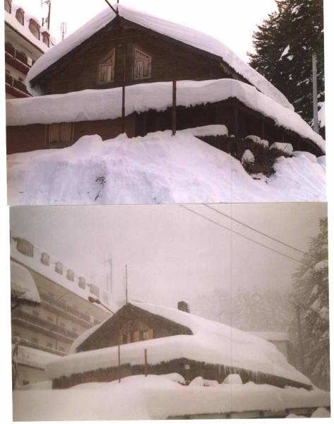 Vista esterna della casa vacanze Affitto Chalet 51597 Camigliatello silano