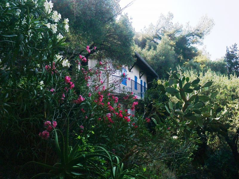 Affitto Casa 51896 Menton (Mentone)