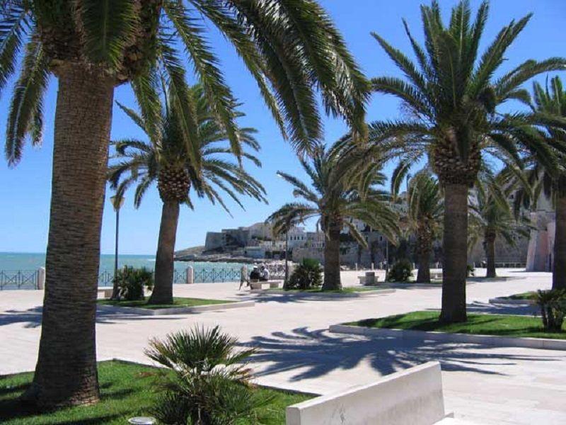 Vista dal terrazzo Affitto Appartamento 52854 Vieste