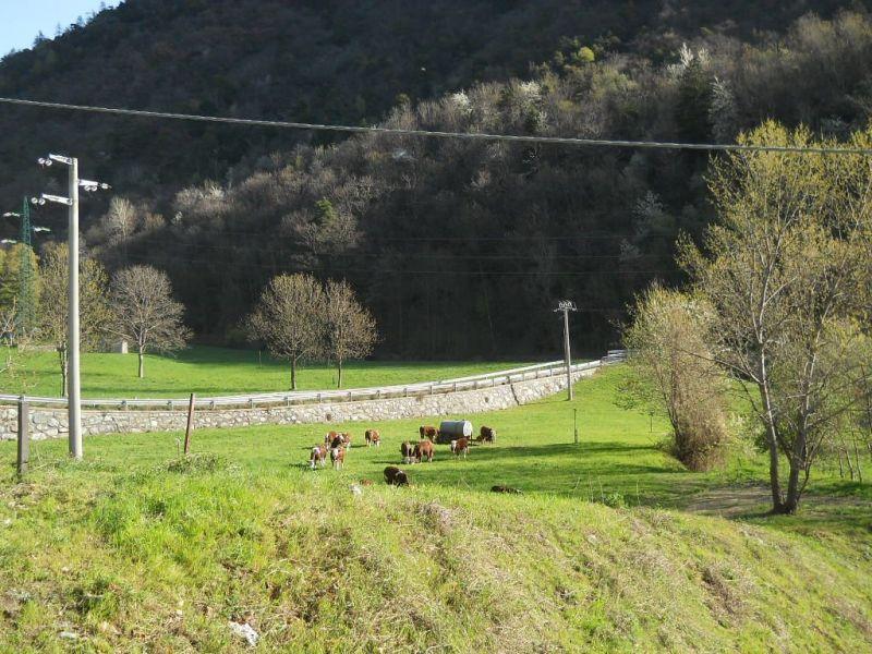Affitto Monolocale 54302 Cervinia (Breuil)