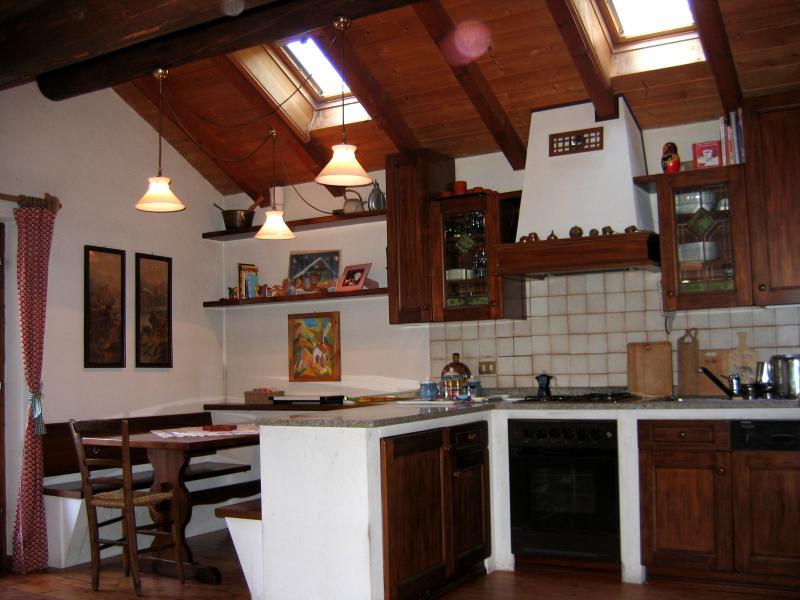 Cucina all'americana Affitto Appartamento 55088 Falcade