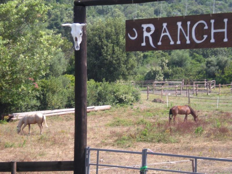 Vista esterna della casa vacanze Affitto Villa  58943 Farinole