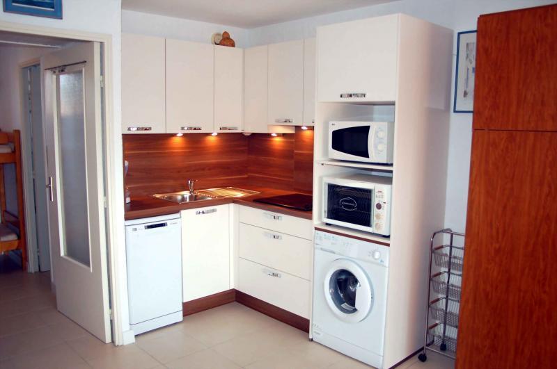Barbecue Affitto Appartamento 61806 La Londe les Maures
