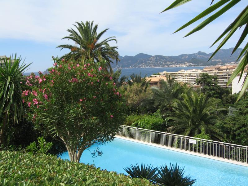 Piscina Affitto Appartamento 62604 Cannes