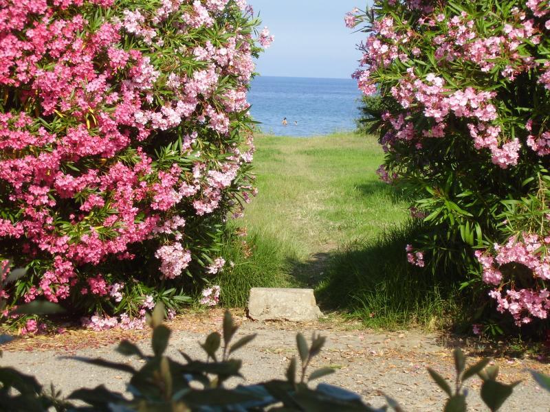 Vista dalla casa vacanze Affitto Villa  7795 Moriani Plage