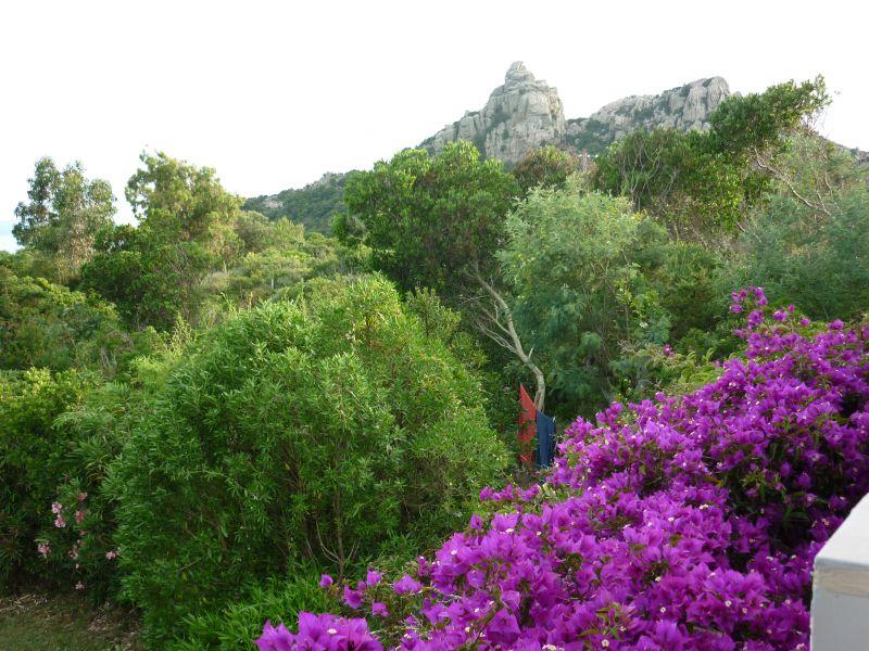 Vista dalla casa vacanze Affitto Appartamento 7894 Bonifacio