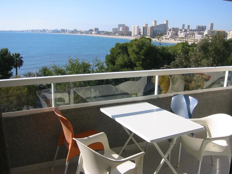Terrazzo Affitto Appartamento 8201 Alicante