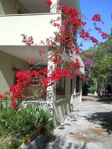 Vista esterna della casa vacanze Affitto Appartamento 104000 Posada