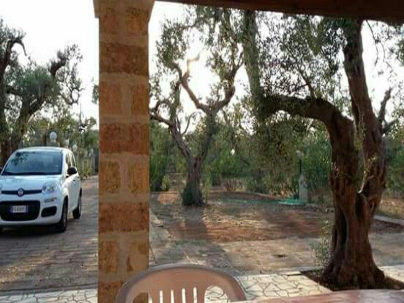 Parcheggio Affitto Appartamento 114748 Santa Maria di Leuca