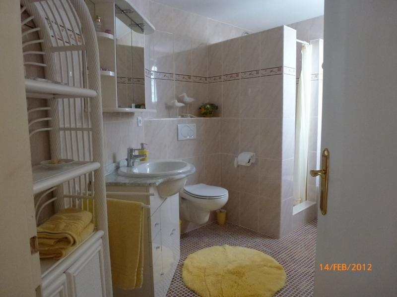 Doccia Affitto Appartamento 68782 Dénia