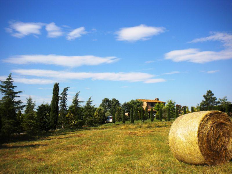 Vista esterna della casa vacanze Affitto Casa 79432 Cortona