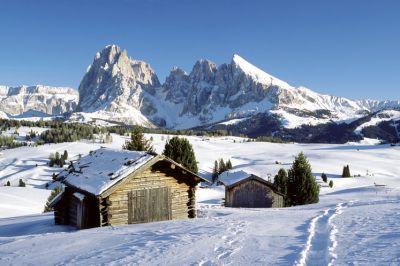 Affitto Appartamento 101251 Alpe di Siusi (Seiser Alm)