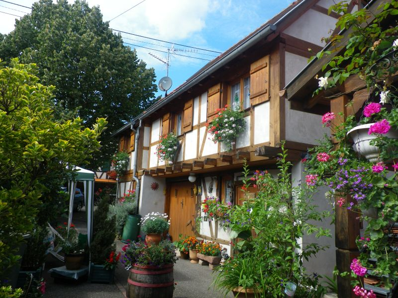 Cortile Affitto Agriturismo 105801 Kintzheim