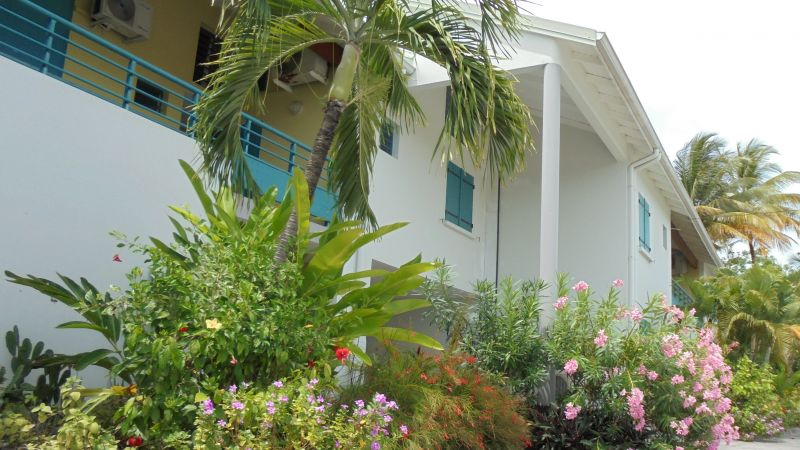Giardino Affitto Appartamento 108495 Sainte Anne (Guadalupa)