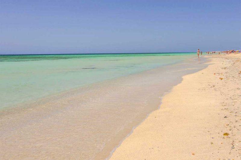 Spiaggia Affitto Appartamento 110079 Tricase