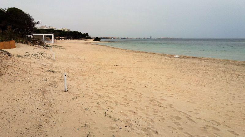 Spiaggia Affitto Appartamento 111089 Gallipoli