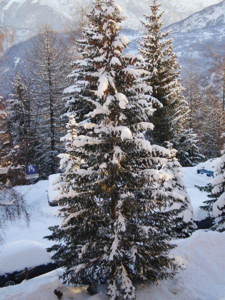Vista esterna della casa vacanze Affitto Monolocale 111875 Le Corbier