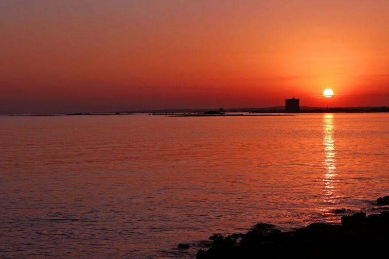 Vista nelle vicinanze Affitto Appartamento 117949 Porto Cesareo