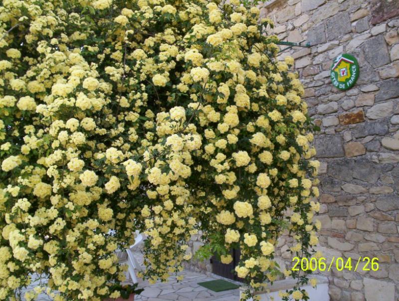 Giardino Affitto Agriturismo 68513 Montpellier