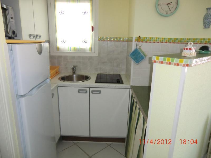 Angolo cottura Affitto Appartamento 70237 La Londe les Maures