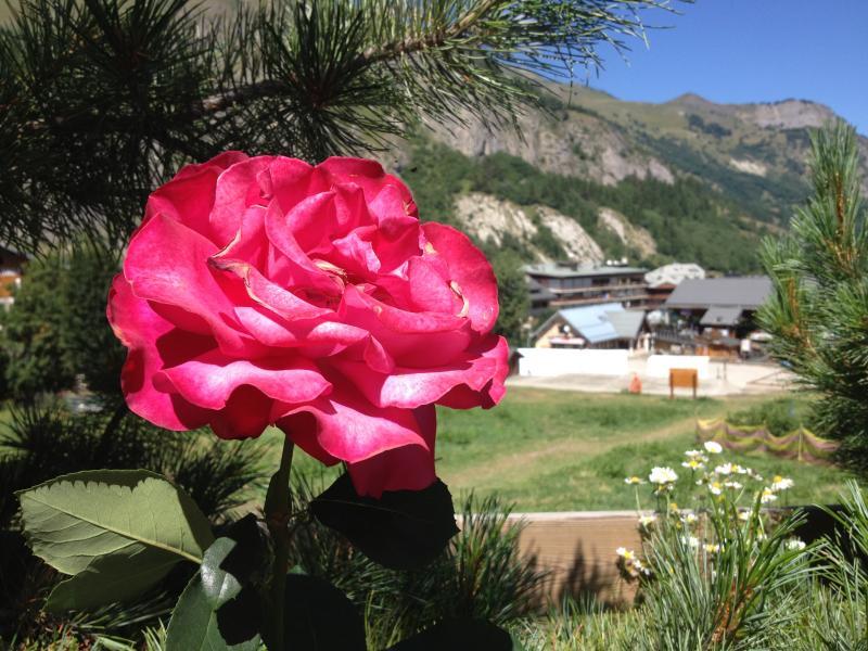 Giardino Affitto Chalet 81297 Valloire