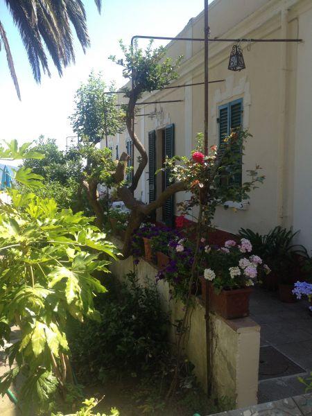 Giardino Affitto B&B 116473 Capoliveri