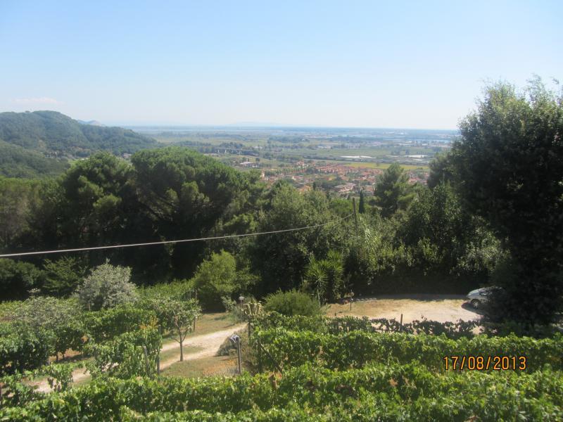 Vista esterna della casa vacanze Affitto Appartamento 70889 Viareggio