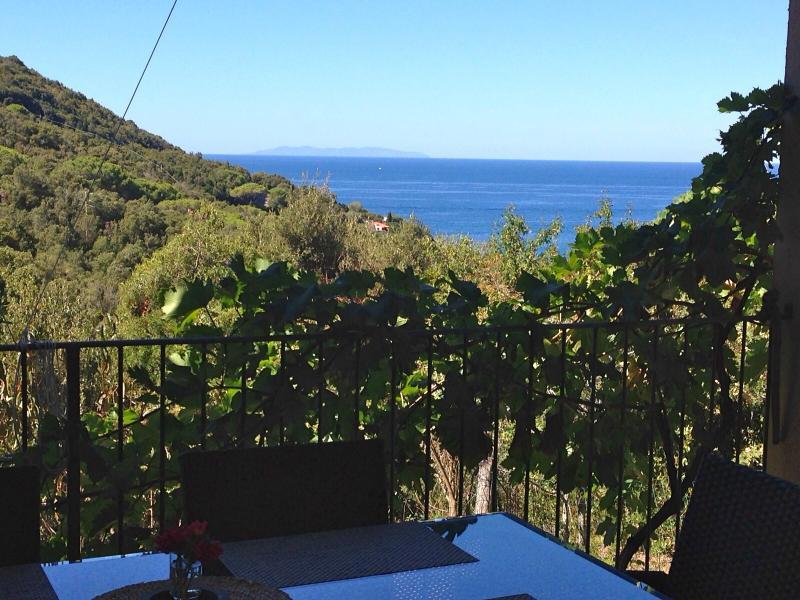 Vista dal terrazzo Affitto Appartamento 73972 Rio nell'Elba