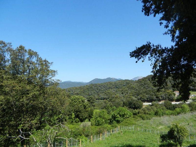 Vista dal terrazzo Affitto Agriturismo 107819 Sartène